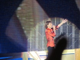 The Rolling Stones (18)