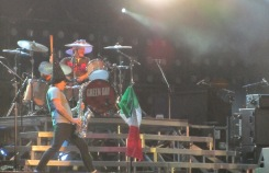 Green Day (11)
