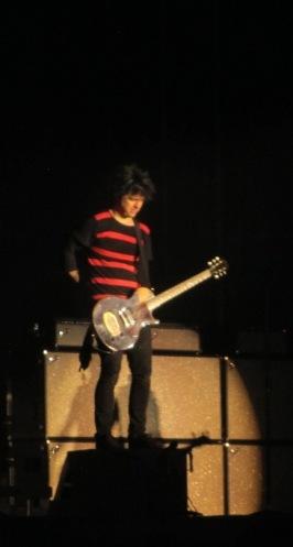 Green Day (15)