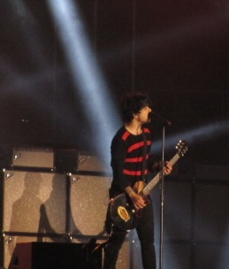 Green Day (16)