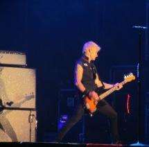 Green Day (20)