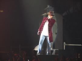 Guns N' Roses (12)