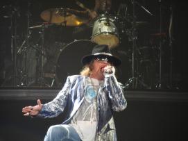Guns N' Roses (2)