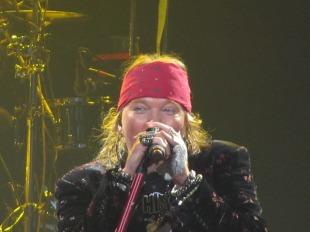 Guns N' Roses (9)
