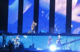 Metallica (14)