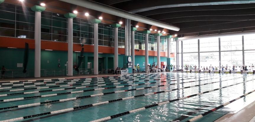 Del nuoto e di altridemoni