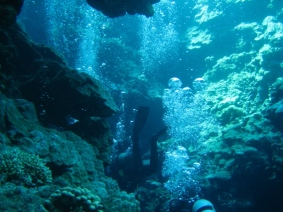 Mar Rosso (112)