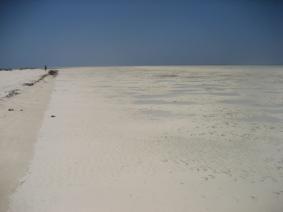 Mar Rosso (135)