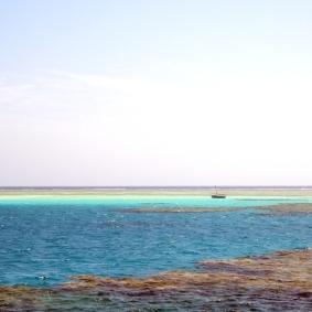 Mar Rosso (59)