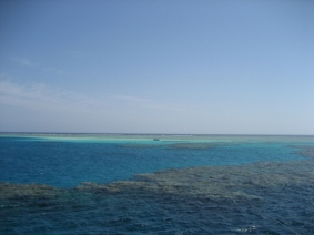 Mar Rosso (92)