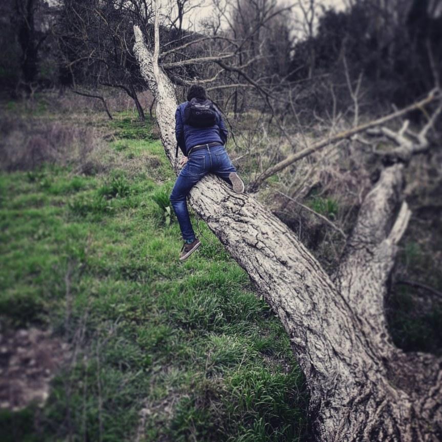 Doti acrobatiche